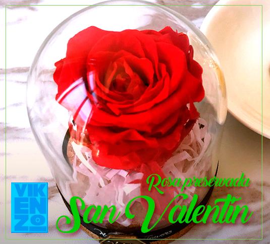 Rosa preservada San Valentin