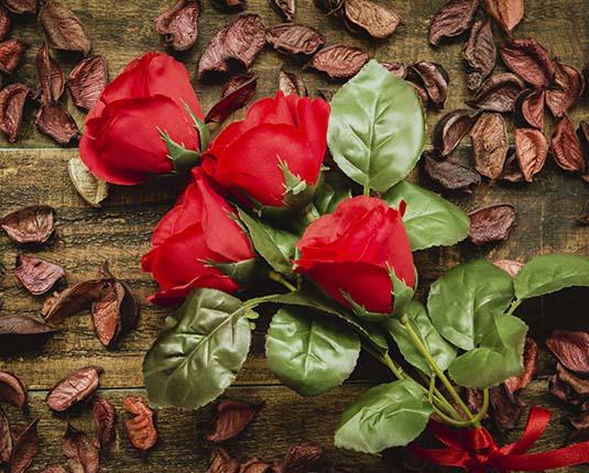 rosas rojas freedom