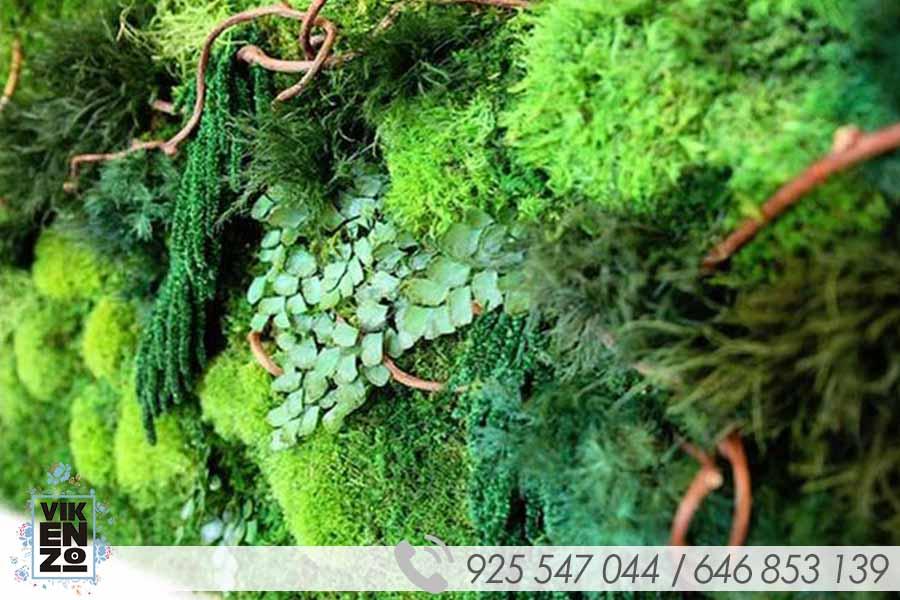 Jardines verticales artificiales y preservados en madrid for Jardines verticales artificiales madrid