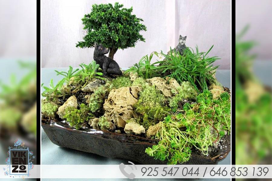 little-garden-galeria3
