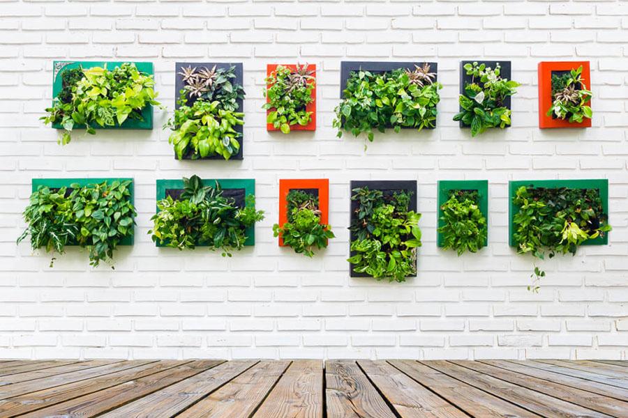 jardines verticales madrid